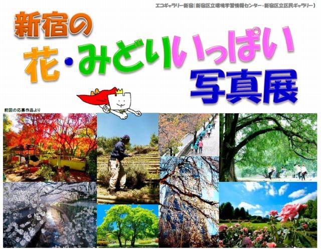 新宿の花・みどりいっぱい写真展(後期)