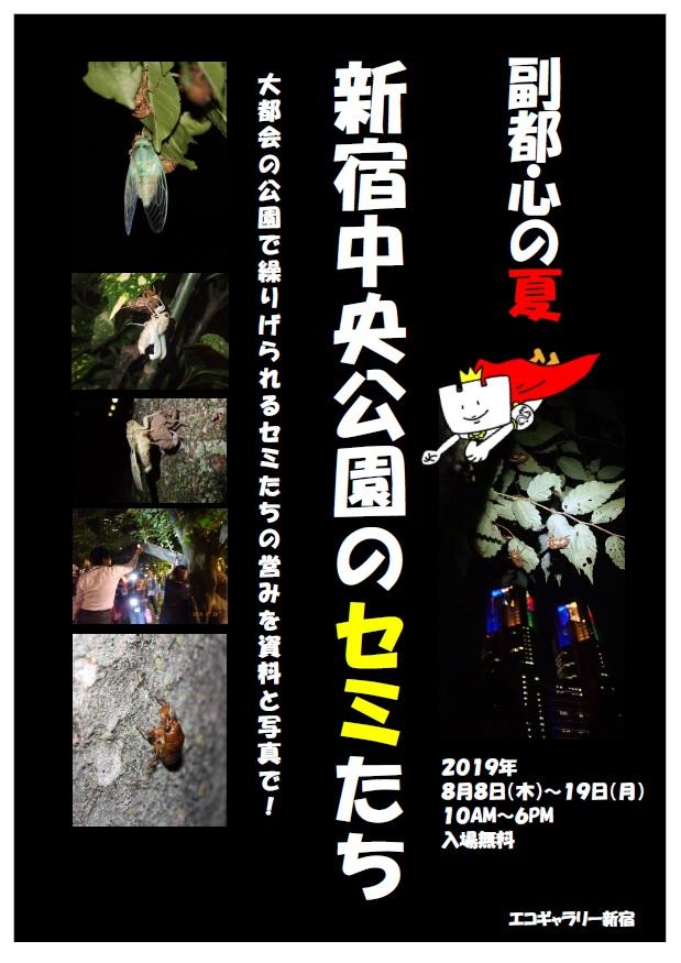 副都心の夏  新宿中央公園のセミたち