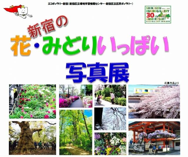 新宿の花・みどりいっぱい写真展 前期(12/16~12/27)