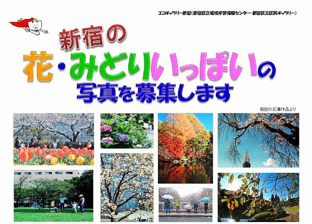 新宿の花・みどりいっぱい写真展 後期